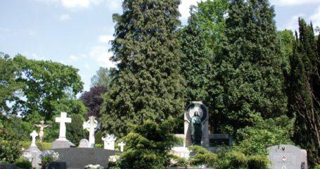 Sfeerfoto Rooms-Katholieke begraafplaats Buitenveldert